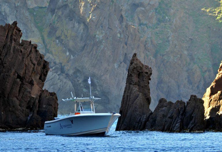 balade sortie en mer corse alpana depart porto