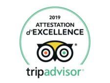excellence-alpana-2019